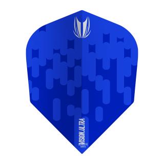 Arcade Vision Ultra Blue TEN-X Flights